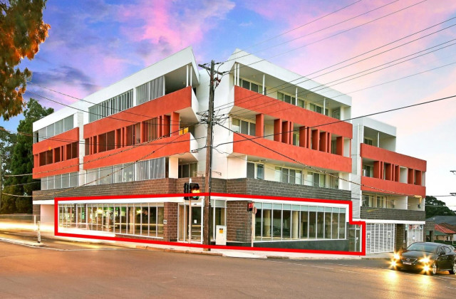 165 Clyde Street, GRANVILLE NSW, 2142