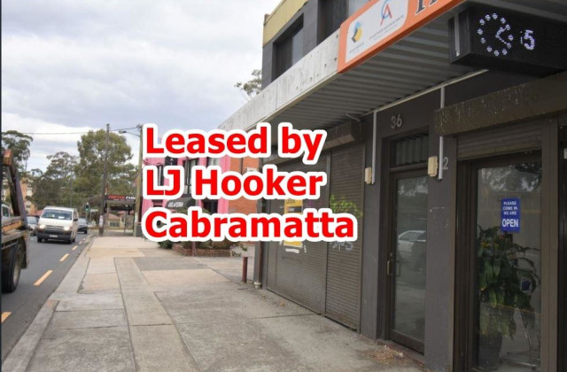 36 The Horsley Drive, CARRAMAR NSW, 2163